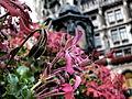 Marienplatz (9506722089).jpg