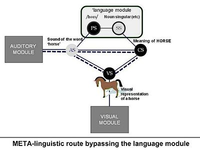 Linguistic diagram