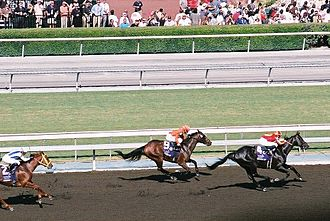 Midnight Lute - Winning the Breeders' Cup Sprint, 2008