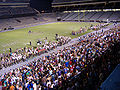 Midnight yell 07.JPG