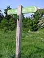 Milepost for London Loop, the Warren - geograph.org.uk - 801845.jpg