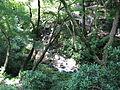Mino-park1.jpg