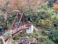 Momijibashi Bridge over Yamautsurigawa River in Shin-Yabakei Valley.JPG