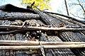 Monacan village hut-Natural Bridge State Park-exterior bark (30710220901).jpg