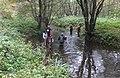 Monitoring hydromorfologiczny rzeki.jpg