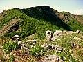 Monte Gonio - panoramio.jpg
