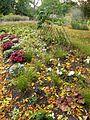 Montréal Jardin botanique 581 (8214213718).jpg