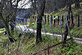 Moosburg Obergoeriach Strasse 12112010 241.jpg