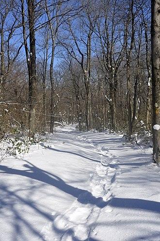 Mount Davis (Pennsylvania) - Image: Mount Davis, Pennsylvania 11