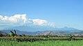 Mount Wilis view.jpg
