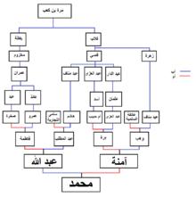 نسب محمد بن عبد الله ويكيبيديا