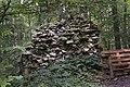Mur från medeltida byggand vid Lummelunda 2.jpg