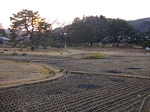 Historic Monuments and Sites of Hiraizumi - Image: Muryokoin ruins Hiraizumi 2007 01 27