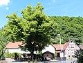 ND-7133-446 Dorflinde-Winterburg-IMG 9155.jpg