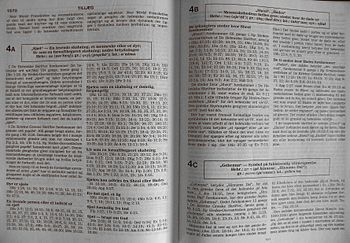 English: Example of appendix from New World Tr...