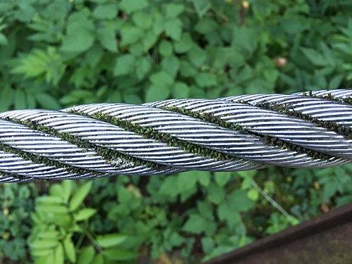 Natur übernimmt die Herrschaft über Metall.jpg
