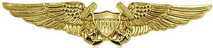 Naval flight officer - The warfare designation insignia of a naval flight officer
