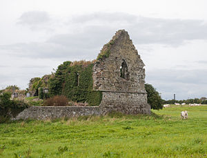 Nenagh - Surviving east gable of the Priory and Hospital of St. John the Baptist at Tyone of the Fratres Cruciferi