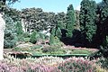 Ness Botanic Gardens, Wirral. - geograph.org.uk - 72018.jpg