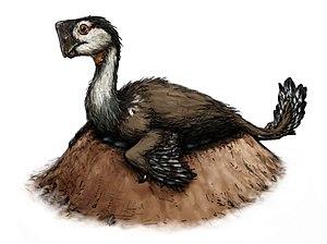 Nemegtomaia - Restoration of a nesting individual