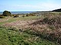 New England Bay Picnic Area - geograph.org.uk - 746706.jpg