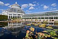 New York Botanical Garden October 2016 004.jpg