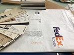 Newone - FedEx Tyvek envelope.jpg