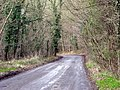 Not far now - the car-park is just around the bend. - geograph.org.uk - 738382.jpg