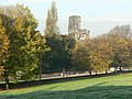November morning, Abbey House Museum Grounds - geograph.org.uk - 276157.jpg
