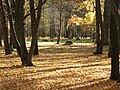 Oak forest park.JPG