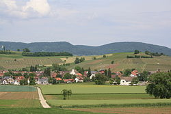 Oberhallau 220.jpg