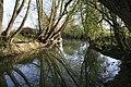 Ock towards the bridge - geograph.org.uk - 1261104.jpg