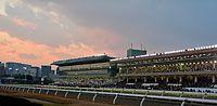 Oi Racecourse 20141230 Tokyo Cinderella mile Just after the start.JPG