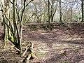 Old Chalk Pit on Moneybury Hill - geograph.org.uk - 1185070.jpg