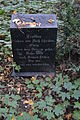 Old cemetery in Küstrin-Kietz 167.JPG