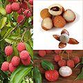 Owoce Liczi.jpg
