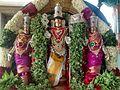Pachaimalai Kalyana Subramanyar pic1.jpg
