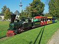 Palmen-Express 16102011 01.JPG