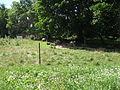 Parc agricole du Bois-de-la-Roche 011.jpg