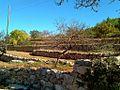 Parets de pedra seca a prop de Sant Mateu d'Albarca - panoramio.jpg