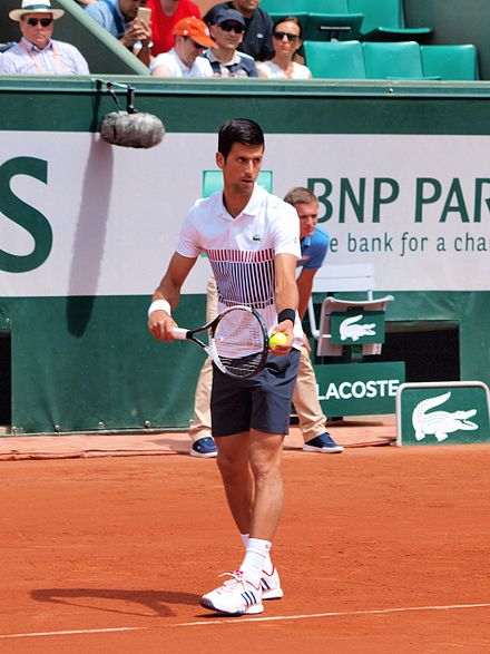 63841fa26318 Djokovic during the 2017 French Open