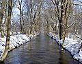 Pasinger Stadtpark - Würm im Winter.JPG