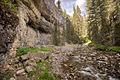 Pebble Creek (3953331740).jpg