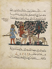 Folio from an Arabic translation of the Materia Medica by Dioscorides