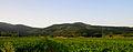 Pelagonia Plain 59.JPG