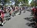 Peloton 3, Menglers Hill, TDU 2010 Stage 1.JPG