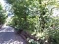 Pentir, UK - panoramio (4).jpg