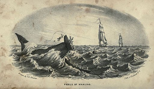 Perils of Whaling, sketch by F. A. Olmstead, 1841