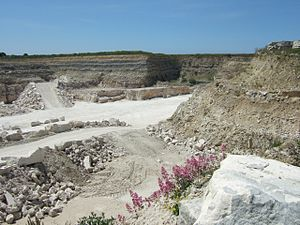 Perryfield Quarry - Perryfield Quarry