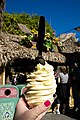 Pineapple Dole Whip.jpg